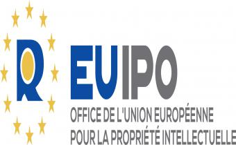 Propri t intellectuelle lextimes - Office de la propriete intellectuelle ...