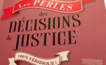 Les perles des décisions de justice
