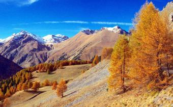 Vallée de la Roya, à proximité de frontière franco-italienne.